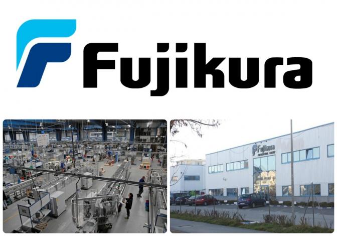 collage_fujikura